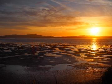 bodega bay sunset