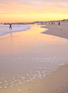 Jersey tide