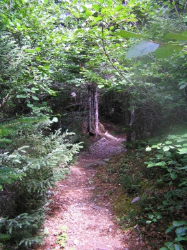Turpin's Trail, Fogo Island
