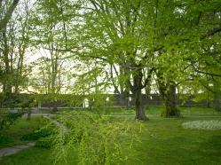visby park